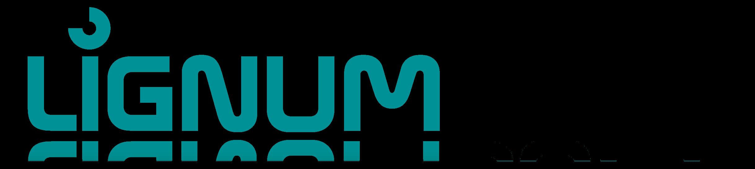 Lignumsoft - Software for furniture industry